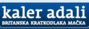 Partnerske mackarne_ kaler adali